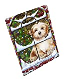 Please Come Home For Christmas Havanese Dog Sitting In Window Art Portrait Print Woven Throw Sherpa Plush Fleece Blanket D118 (50x60 Sherpa)
