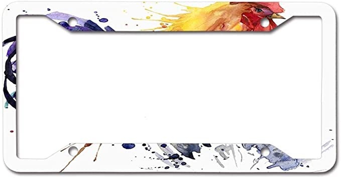 CoolPAI License Plate Frame Decorative Front License Plate Frame12/×6inch