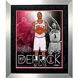 Steiner Sports NBA Chicago Bulls Derrick Rose Team Colors Composite Vertical Framed 11x14 Collage