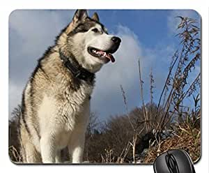 Alaskan Malamute'.... Cute Cool Decorative Design Animal Dog Mousepad