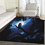 Night Print Area rug Quiet Night in the Woods Full Moon Tall Trees and Owl on Branch Tranquil Scene Indoor/Outdoor Area Rug 3'x4' Black Blue White