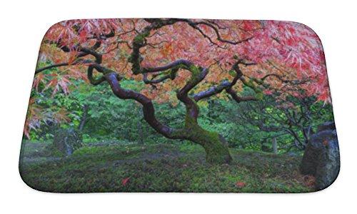 Gear New Bath Rug Mat No Slip Skid Microfiber Soft Plush Absorbent Memory Foam, Old Maple Tree At Japanese Garden, 24x17