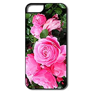 Popular Roses PINK IPhone 5/5s Case For Birthday Gift