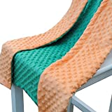 WOMHOPE Soft Minky Dot Baby Blanket Nursery Swaddling Blankets in Double-sided Color - Toddler Blanket Children's Blanket Nursery Blanket Travel Bedding No Ruffle - 28