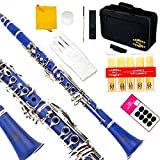 Glory Blue/Silver keys B Flat Clarinet with Second Barrel, 11reeds,8 Pads cushions,case,carekit,CLICK to see more Colors