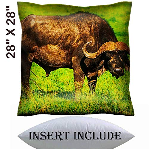 28x28 Throw Pillow Cover with Insert - Satin Polyester Pillow Case Decorative Euro Sham Cushion for Couch Bedroom Handmade Male Cape Buffalos Standing in Short Grass Image 34700099 Customized Tabl ()