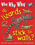 Why Why Why... Do Lizards Stick to Walls?, Lucy Dowling, 1422215822