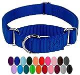 Royal Blue Large Martingale Heavyduty Nylon Dog Collar