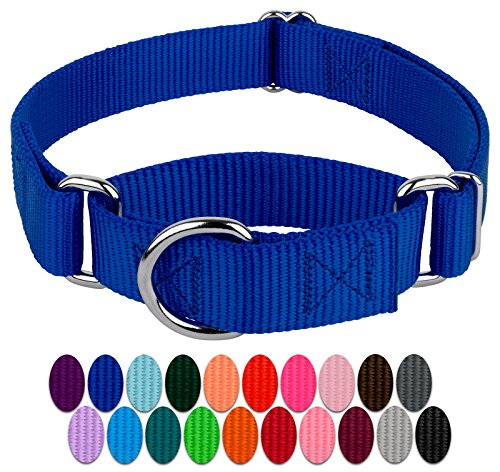 Country Brook Design | Martingale Heavyduty Nylon Dog Collar - Royal Blue - Medium