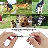 XUZOU LPH-GSZ-BL-0909-PN01 Dog Whistle to Stop