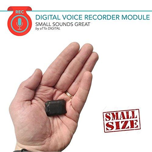 Mini Voice Recorder - Voice Activated Recording - 572 Hours Recordings...