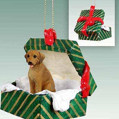 Conversation Concepts Rhodesian Ridgeback Gift Box Green Ornament ()