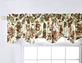 Stylemaster Home Products Twill and Birch Celine Lined Printed Scalloped Valance, 56 by 17-Inch, Coral