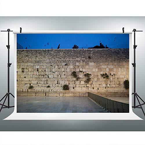 Jerusalem Western Wall Photography Backdrop, 9x6FT, Israel City Background, Photo Booth Studio Props LYLU669