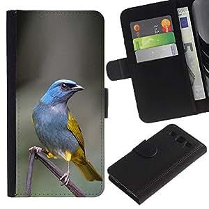 KingStore / Leather Etui en cuir / Samsung Galaxy S3 III I9300 / Direction Feather Grey Oiseau