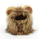 StyleZ Pets Cosplay Lion Costume Funny Lion Wig Lion Mane for Medium to Large Size Cat and Dogs (Cat)