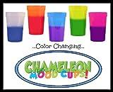 Chameleon Mood Cups Asst'd 17oz (5 Colors/2 ea)