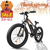ECOTRIC Powerful Electric Bicycle 26″ Fat Tire Blue Rim Ebike Beach Snow Mountain Bike with 500W Motor 36V/13AH Removable Battery