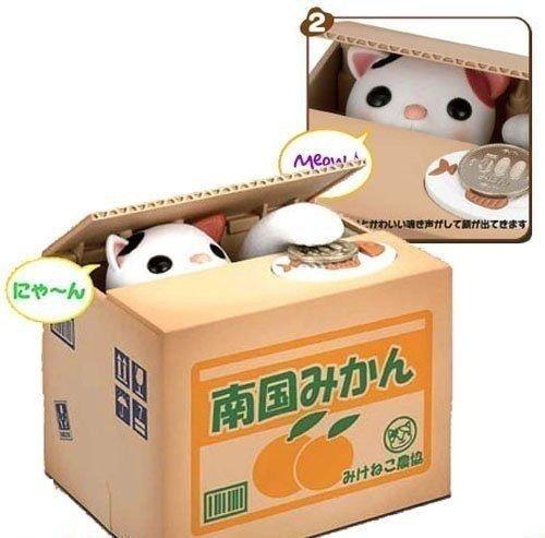 Sparbüchse Spar Dose Geldgeschenk Spardose Büchse Katze In Der Kiste