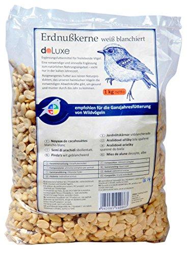Luxury Premium Wild Bird Food in Different Types Bird House for Garden, Patio, Balcony