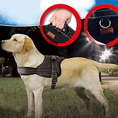 Jasonwell No Pull Dog Harness Dog Leash Padded Pet Walking Harness Heavy Duty for Dogs