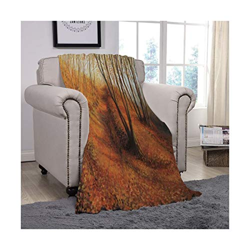 DiyItem Flannel Blanket Multi-Function Polyester Cover Soft Reversible Plush Blanket for Couch Bed Sofa, King