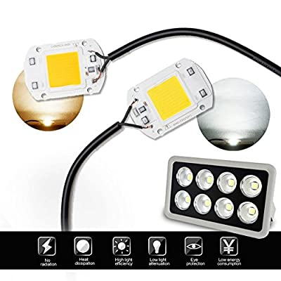 Warm White, 20W : LED COB Chip Flood Light Lamp AC220V SMD 20W 30W 50W White/Warm White With Smart IC High Power DIY Outdoor Floodlight Spotligh