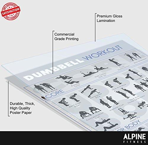 Alpine Fitness mancuernas ejercicio & Fitness cartel laminado planificador de gimnasio para un entrenamiento de gran: Amazon.es: Deportes y aire libre