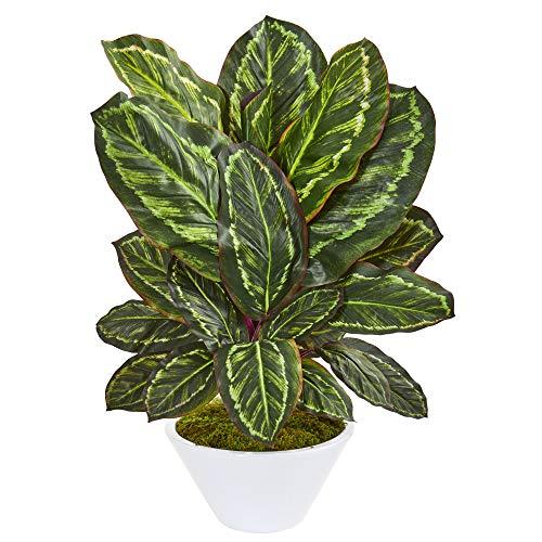 Nearly Natural 8412 26-in. Maranta Artificial White Vase Silk Plants Green