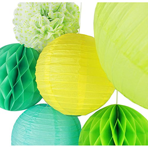 SUNBEAUTY Pack of 6 Yellow Greenery Paper Lanterns Tissue Pom Poms Honeycomb Balls for Spring Summer Party Hanging (Paper Honeycomb Ball)