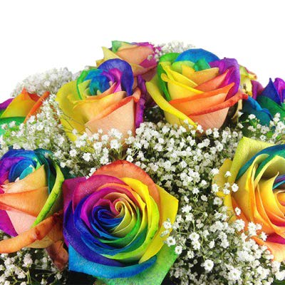 Bunter Blumenstrauss Mit 10 Regenbogenrosen Echte Bunte Rosen