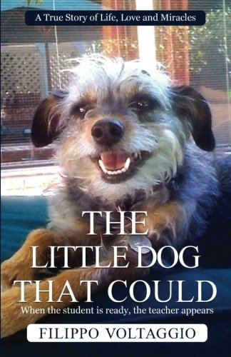 The Little Dog That Could: A True Story of Life, Love and Miracles