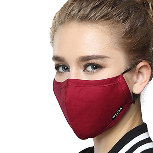 Mouth Mask Respirator (ZWZCYZ PM2.5 Respirator Masks Anti-haze Masks 4 Layer Filter Insert Protective Filter Media Insert Activated Carbon Cotton Mouth Masks (Medium(Women's), Wine Red))