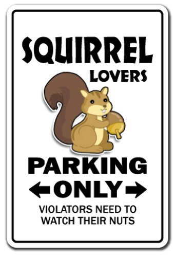Steel Squirrel (SignMission Squirrel Lovers Parking Sign Hunter Rodent Park Animal | Indoor/outdoor | 12