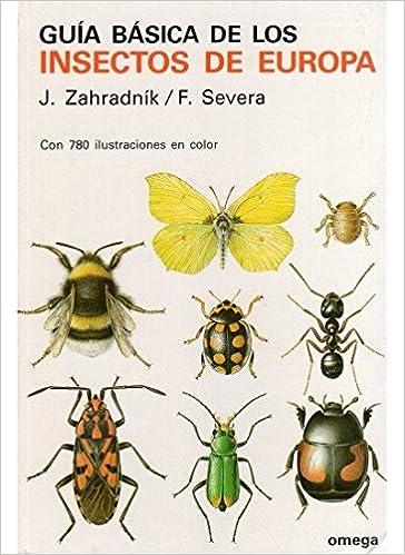 GUIA BASICA DE LOS INSECTOS GUIAS DEL NATURALISTA-GUÍAS BÁSICAS-VARIOS: Amazon.es: Zahradnik, J.: Libros