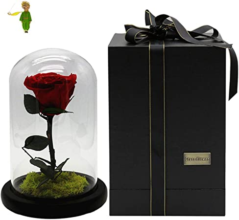 TP&DD Rosa del principito Flor eterna,Día de San valentín Regalo Creativo,Cubierta de Cristal Caja de Regalo Regalo niña-A 20x20x33cm(8x8x13inch): Amazon.es: Hogar