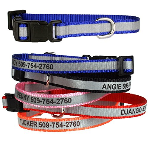GoTags Extra Small Personalized Reflective Dog Collars, Custom Engraved with Pet Name and Phone Number, Adjustable Dog Collar with Quick Release Buckle for Small and Extra Small Dogs