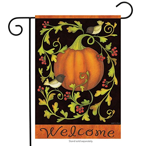 Briarwood Lane Pumpkins and Vines Fall Garden Flag Chickadees Welcome Autumn 12.5