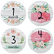 Pinkie Penguin Baby Monthly Stickers Floral Watercolors - Baby Girl Milestone Onesie Stickers - 1-12 Months - Bodysuit Baby Stickers