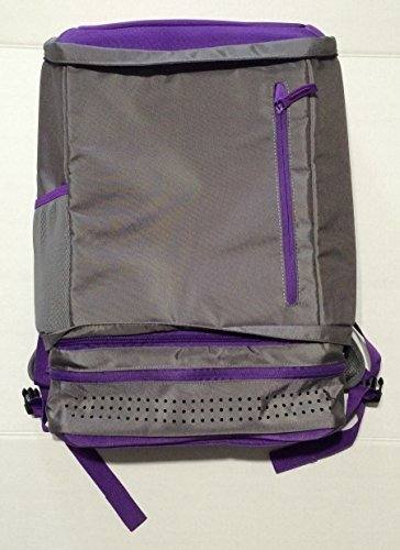 staples-back2back-computer-tech-backpack-gray-purple