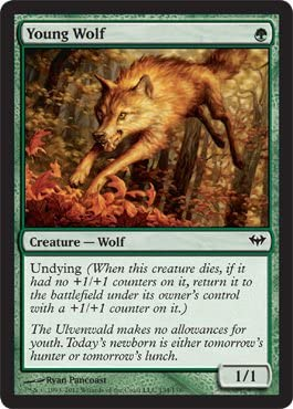 Young Wolf the Gathering Dark Ascension Magic
