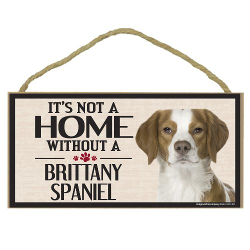 Imagine This Wood Sign for Brittany Spaniel Dog Breeds