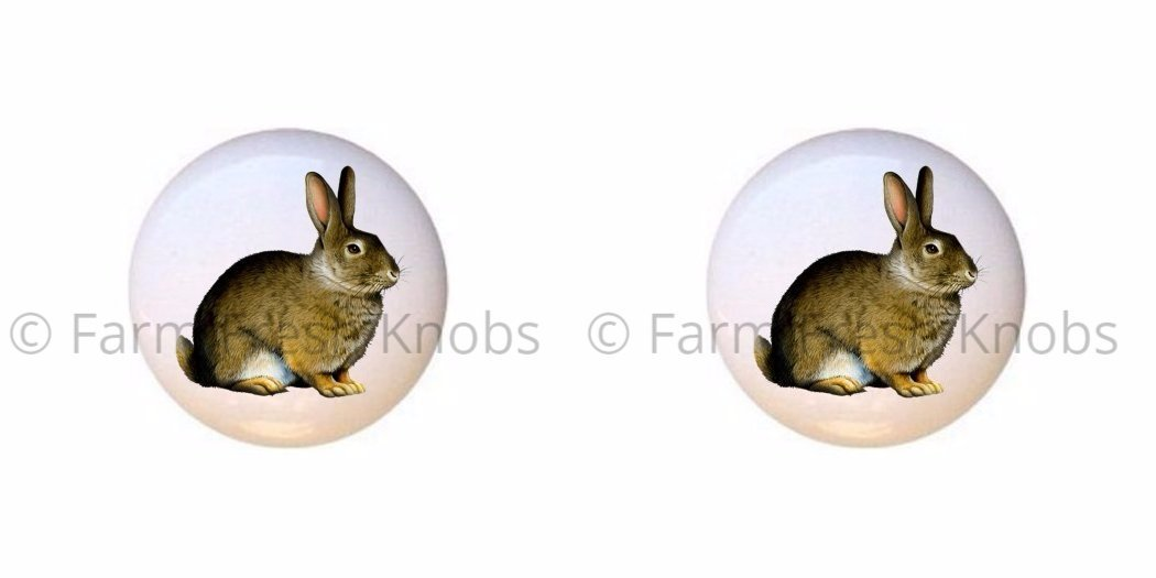 Set of 4 Ceramic White Bunny Rabbit Knobs or Pulls for Cabinets 4 Dressers and Drawers
