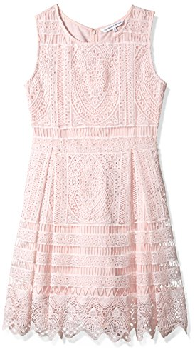 cupcakes and cashmere Women's Summers Lace Fit N Flare Dress, Soft Pink, Large by cupcakes and cashmere