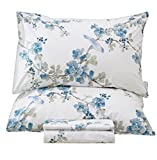 Queen's House Egyptian Cotton Sheets Bird Printed Bed Sheets Sets-Queen,C