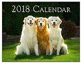 Golden Retrievers Calendar 2018 (Wall)