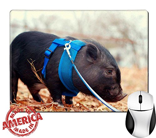 """Luxlady Natural Rubber Mouse Pad/Mat with Stitched Edges 9.8"""" x 7.9"""" Pot bellly pig on leash IMAGE 21423483 (Pot Belly Price Pig)"""