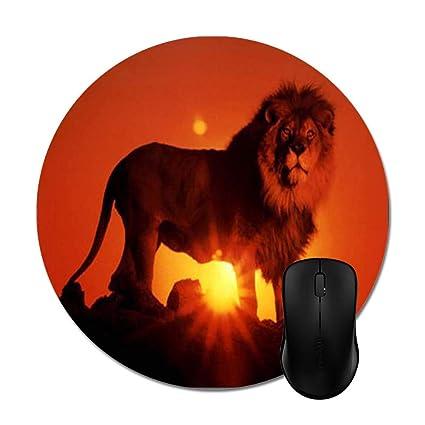 536c36a746f39 Amazon.com : Lion Ten Most Beautiful Animals Mouse Pad Stylish ...