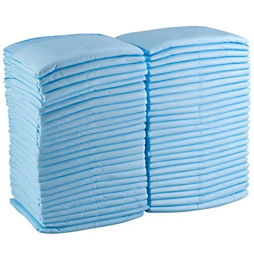 Essential Underpad - Pantryware Essentials PE Underpad 23x36 20 Disposable Underpads, 23