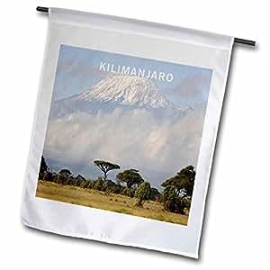 3dRose fl _ 80784_ 1de África Kilimanjaro jardín bandera, 12por 45,72cm